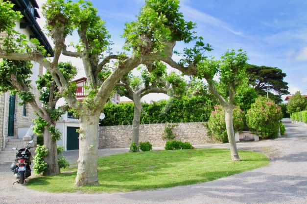 location-vacances-saint-jean-de-luz-vue-mer-spacieux-terrasse-parking-plein-sud-2019-044
