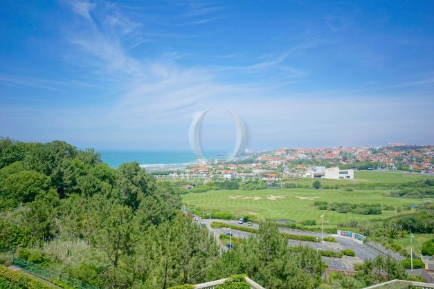 ocation-vacances-bidart-T2-roseraie-piscine-parking-plages-ilbarritz-vue-mer-001