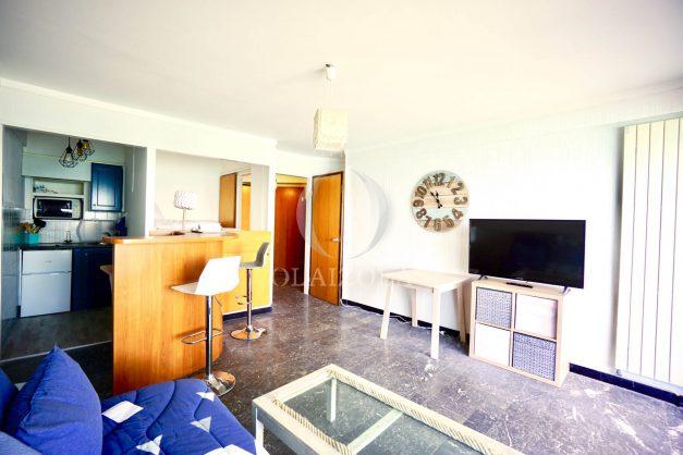 location-vacances-agence-olaizola-studio-biarritz-côte-des-basques-vue-mer-centre-ville-plage-a-pied-005