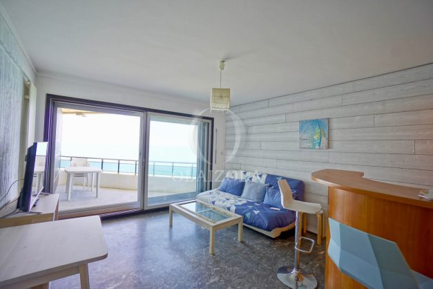 location-vacances-agence-olaizola-studio-biarritz-côte-des-basques-vue-mer-centre-ville-plage-a-pied-007