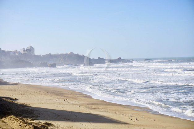 location-vacance-biarritz-appartement-t2-vue-mer-miramar-terrasse-centre-ville-parking-003