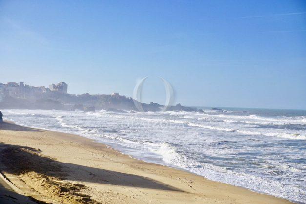 location-vacance-biarritz-appartement-t2-vue-mer-miramar-terrasse-centre-ville-parking-023