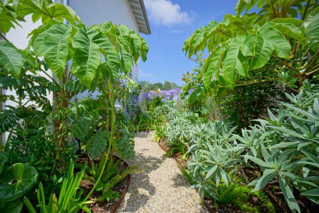 location-vacances-anglet-villa-piscine-terrasse-jardins-magnifique-salon-sejour-transate-soleil-5-chambres.016